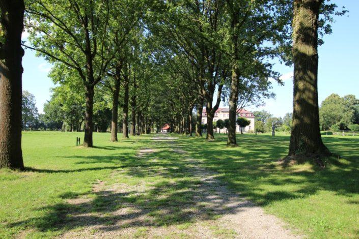 Allee auf Schloss Möhler